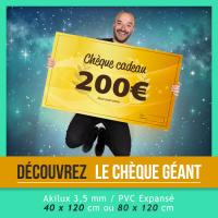 Chèque-géant-facebook_ok
